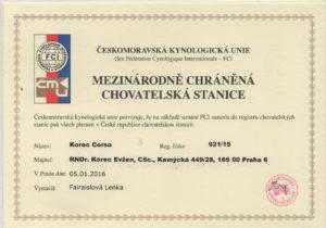 Korec Corso certifikát