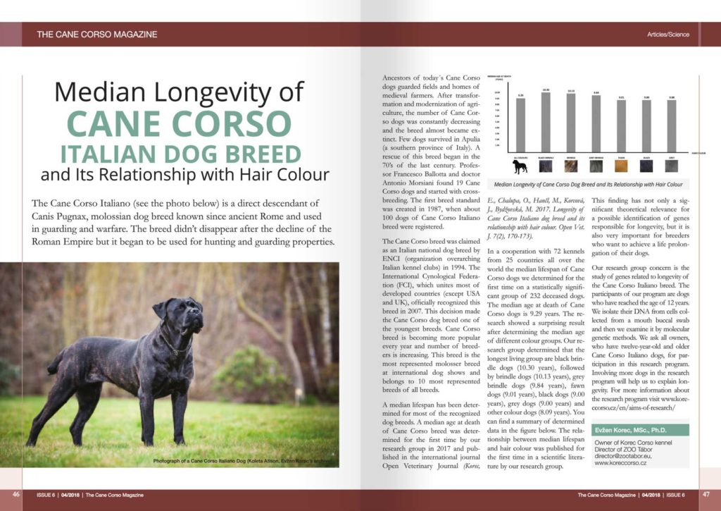 The Cane Corso Magazine: Median Longevity of Cane Corso Italian Dog Breed and Its Relationship with Hair Colour